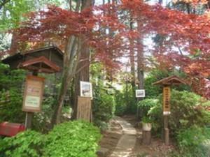 森の美術館
