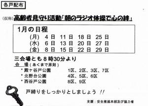 img453 (2)